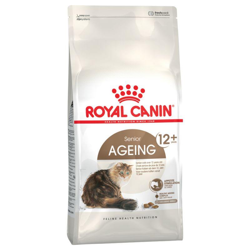 Royal Canin Ragdoll Adult Alimentazione Gatto
