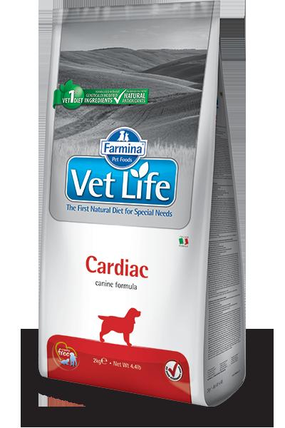 Farmina Vet Life Hepatic Per Cani