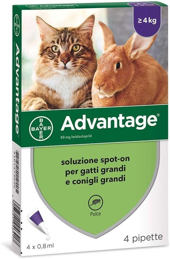 Frontline Combo Per Gatto